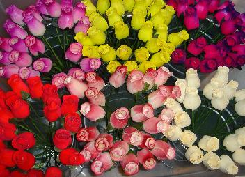 Wooden Red Roseswholesale Wood Rosesall Colors In Stockwood Roses